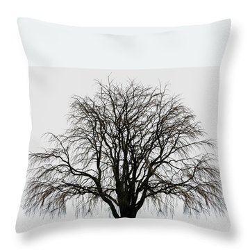 Throw Pillow featuring the photograph The Tree By The Side Of The Road by Jim Dollar