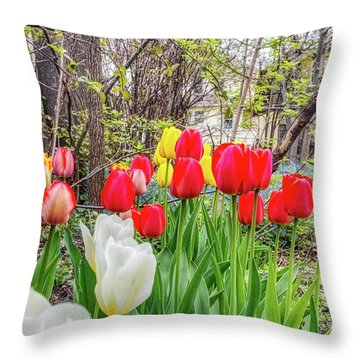 The Tulips Are Out. Throw Pillow