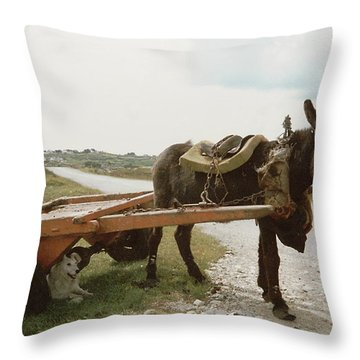 Throw Pillow featuring the painting The Turf Donkey by Val Byrne