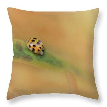 The Voyage Of Discovery Throw Pillow