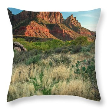 Throw Pillow featuring the photograph The Watchman by Adam Romanowicz