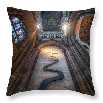 The Way Of Life II Throw Pillow