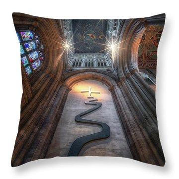 The Way Of Life II Throw Pillow