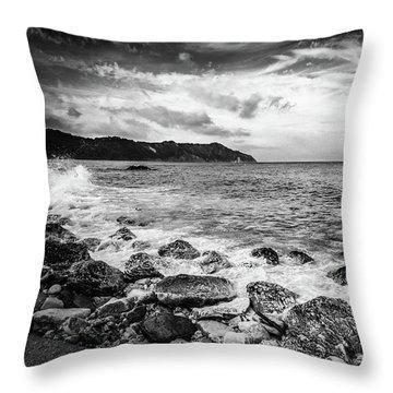 The Winter Sea #4 Throw Pillow