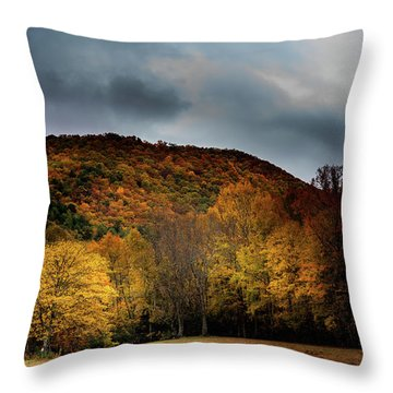 Throw Pillow featuring the photograph The Yellow Tree by Greg Mimbs