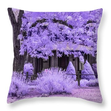 Throw Pillow featuring the photograph Third And D by Dan McGeorge