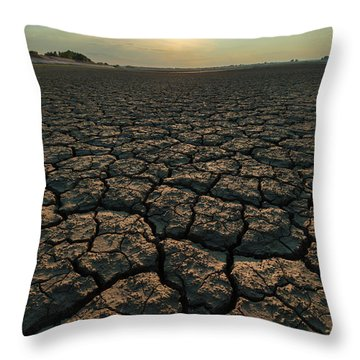 Thirsty Ground Throw Pillow