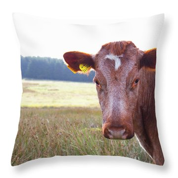 This Is My Land Throw Pillow