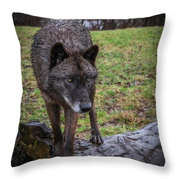 This Is My Log Throw Pillow