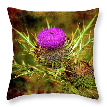 Throw Pillow featuring the photograph Thistle Life by Milena Ilieva