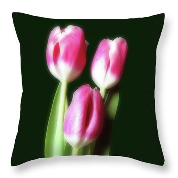 Throw Pillow featuring the photograph Three Beautiful Tulips by Johanna Hurmerinta