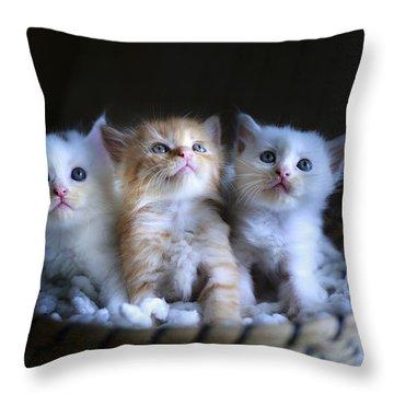 Three Little Kitties Throw Pillow