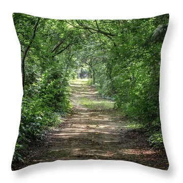 Throw Pillow featuring the photograph Through The Forest by Dale Kincaid