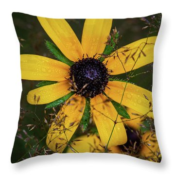 Throw Pillow featuring the photograph Through The Meadow Grasses by Dale Kincaid