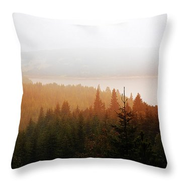 Throw Pillow featuring the photograph Through The Mist by Milena Ilieva