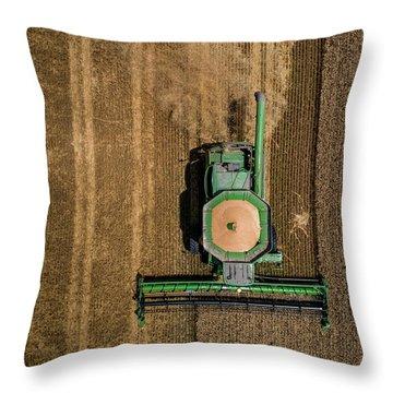 Through Wheat Throw Pillow