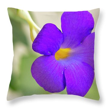 Thunbergia Erecta Bush Clock Vine Throw Pillow