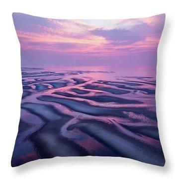 Tidal Flats Sunset Throw Pillow