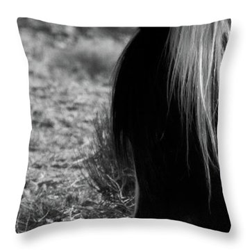 Throw Pillow featuring the photograph Tierra by Catherine Sobredo