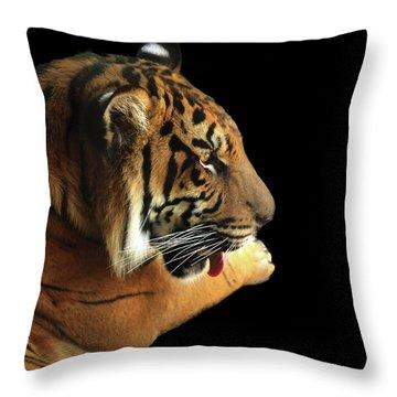Tiger On Black Throw Pillow
