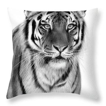 Tiger Painting Throw Pillow