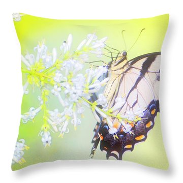 Tiger Swallowtail Butterfly On Privet Flowers Throw Pillow