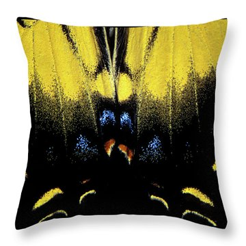 Throw Pillow featuring the photograph Tiger Swallowtail  by Jeff Phillippi