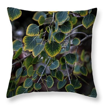 Times, They Are A Changin' Throw Pillow