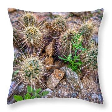 Tiny Cactus Throw Pillow