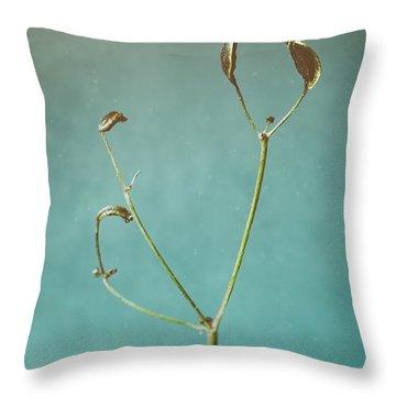 Tiny Seed Pod Throw Pillow