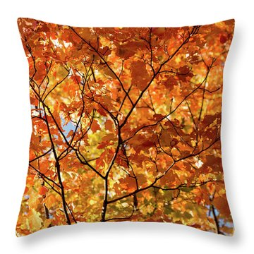 To Be Up In The Trees Throw Pillow