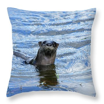 To My Otter Amazement Throw Pillow