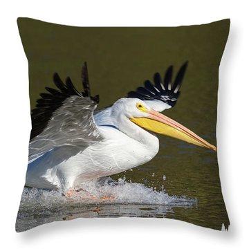 Touchdown Throw Pillow