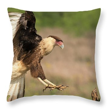 Touching Down Throw Pillow