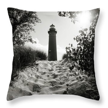 Throw Pillow featuring the photograph Tower by Michelle Wermuth