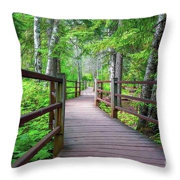 Trail At Gooseberry Falls Throw Pillow