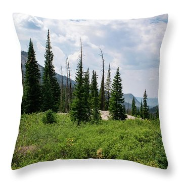 Trail To Gilpin Lake Throw Pillow