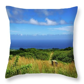 Trail To The Ocean Throw Pillow