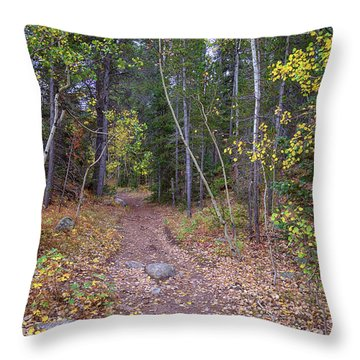 Throw Pillow featuring the photograph Trailhead by James BO Insogna