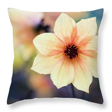 Transport Me To Summer Throw Pillow