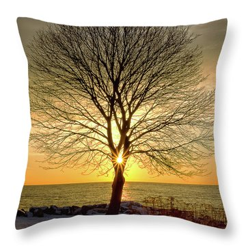 Tree Framed Sunrise New Hampshire Throw Pillow