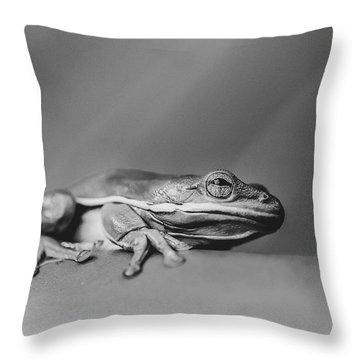 Tree Frog Bw Throw Pillow