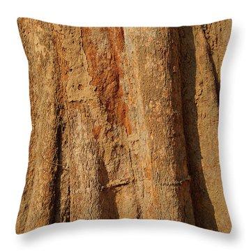 Tree Trunk And Bark Of Chambak Throw Pillow