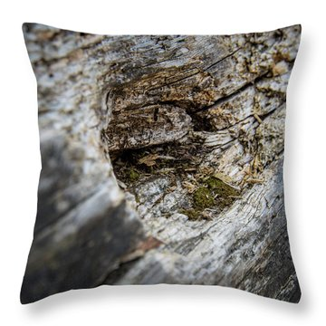 Tree Wood Throw Pillow