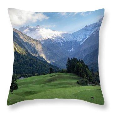 Trettachtal, Allgaeu Throw Pillow