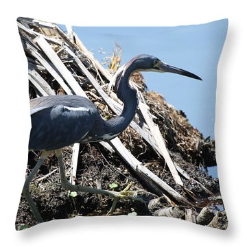 Tri-colored Heron 40312 Throw Pillow