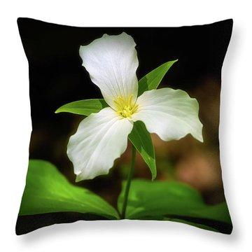 Trillium 1 Throw Pillow