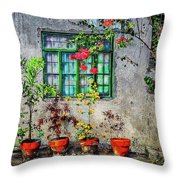 Throw Pillow featuring the photograph Tropical Wall by Michael Arend