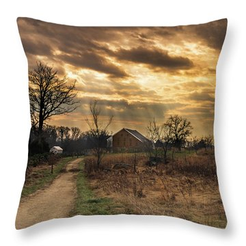 Trostle Sky Throw Pillow