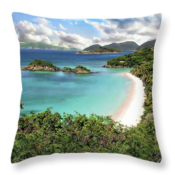 Trunk Bay Throw Pillow